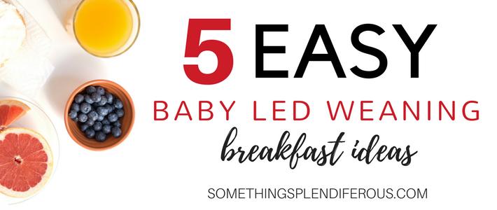 5 Easy Baby Led Weaning Breakfast Ideas Is it hard for you to think of breakfast ideas for your little one? somethingsplendiferous.com